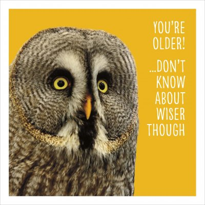 You're Older Birthday Card