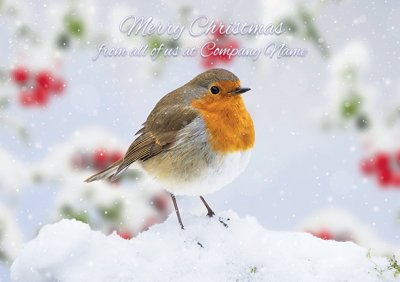 Robin in Snow Front Personalised Christmas Card