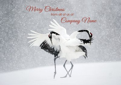 Dancing Cranes Personalised Christmas Card - Front Personalisation