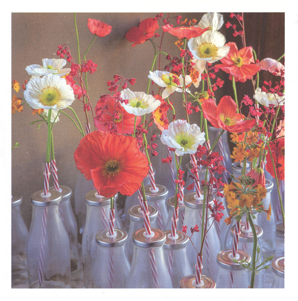 Poppies and Primulas Greeting Card