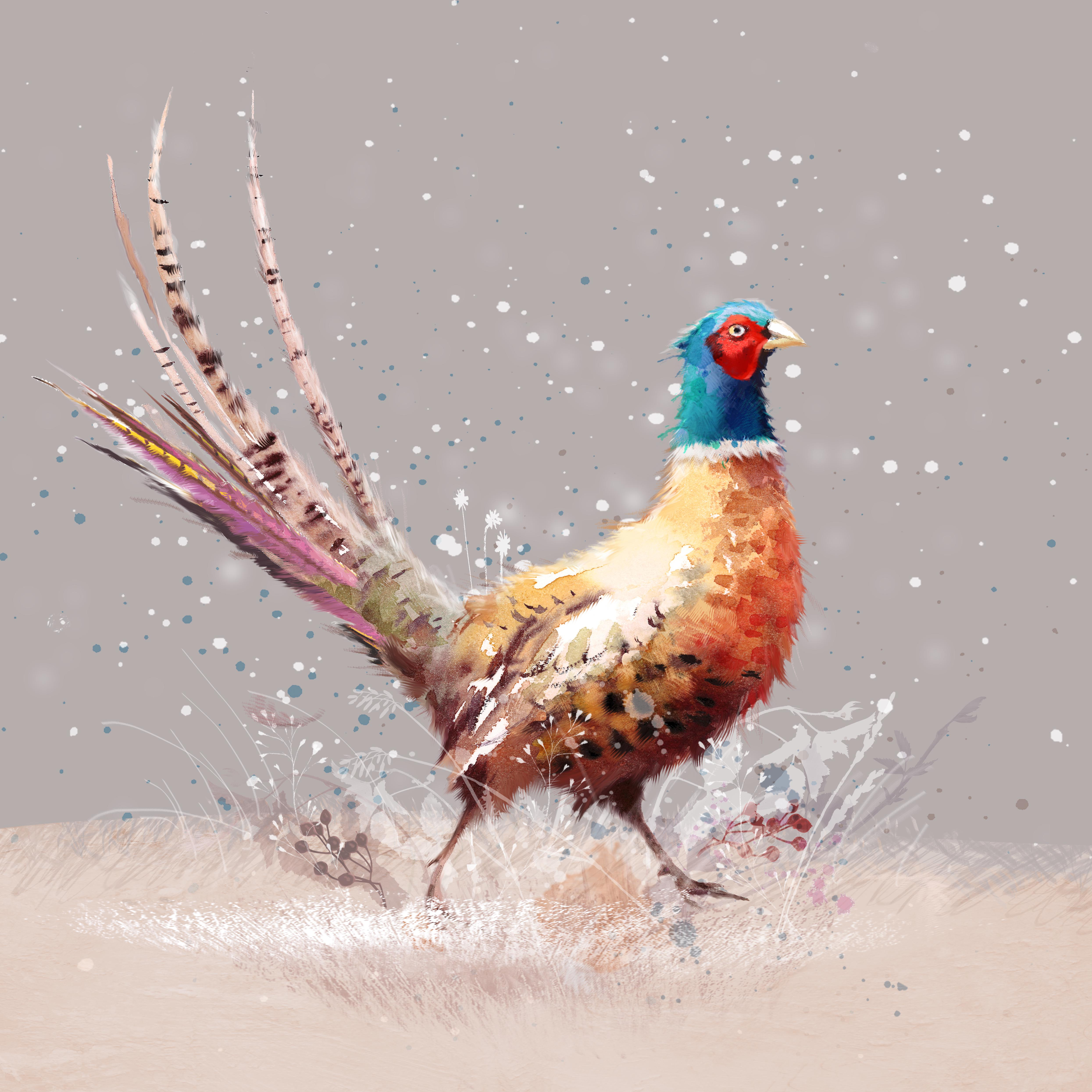 Colourful Pheasant Personalised Christmas Card