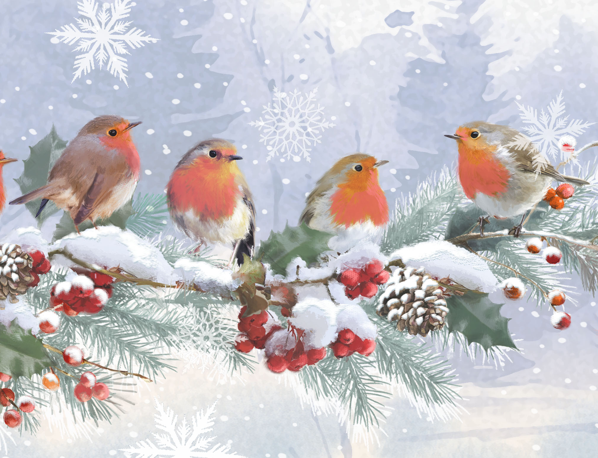 Robins on a Holly Branch Personalised Christmas Card