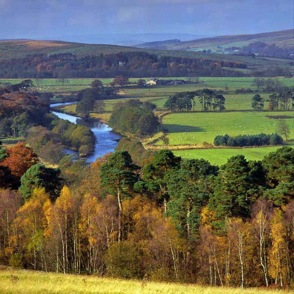 North Tyne Valley in Autumn Greeting Card