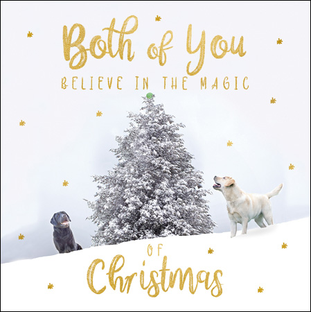 Snow Dogs Both of You Christmas Card