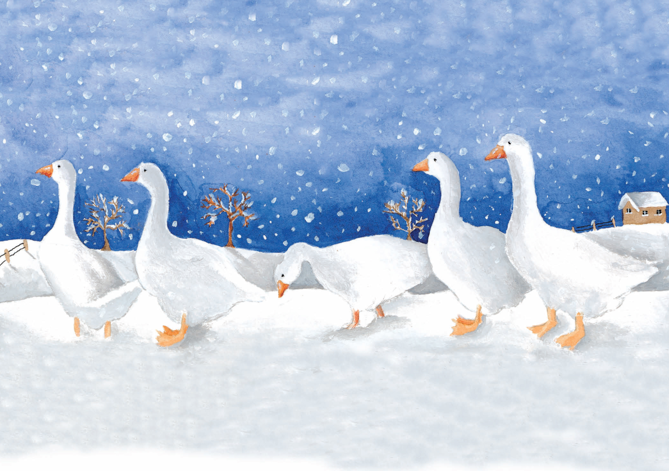 Gaggle of Geese Cancer Research UK Christmas Pack (10)