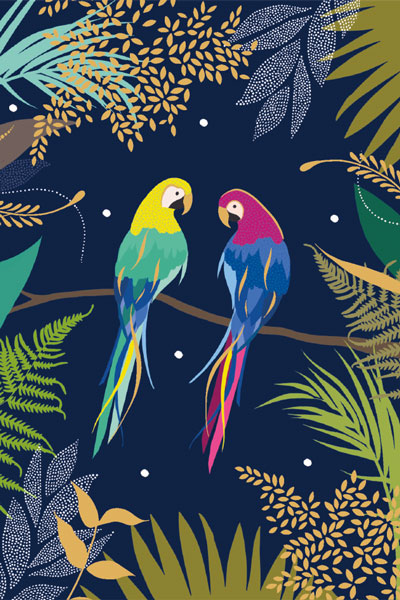 Parrots Notecard Pack (10)