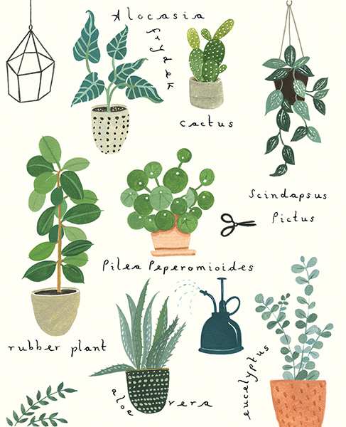 Plant Types Greeting Card
