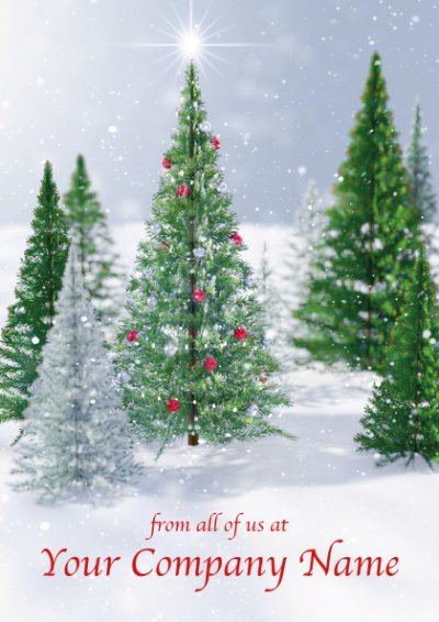 Merry Christmas Personalised Christmas Card