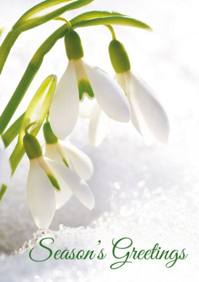 Snowdrops Front Personalised Christmas Card