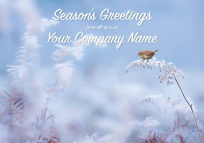 Frosty Morning Front Personalised Christmas Card