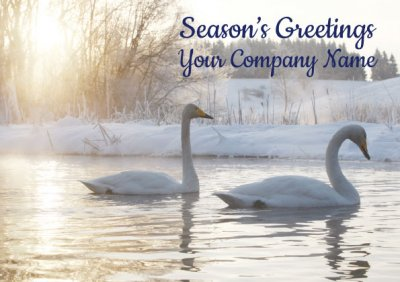 Swans Front Personalised Christmas Card