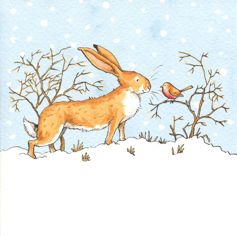 Hare Meets Robin Christmas Pack (8)