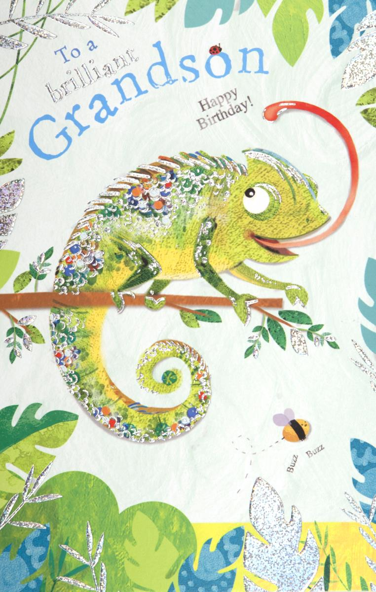 Chameleon Grandson Birthday Card