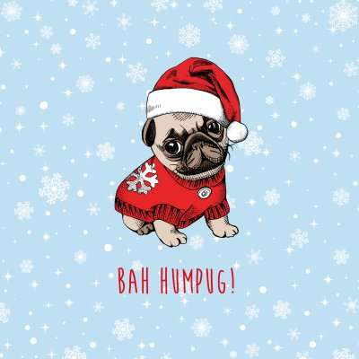 Bah Humpug Marie Curie Christmas Pack (10)