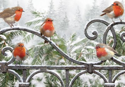 Robins On a Gate Personalised Christmas Card
