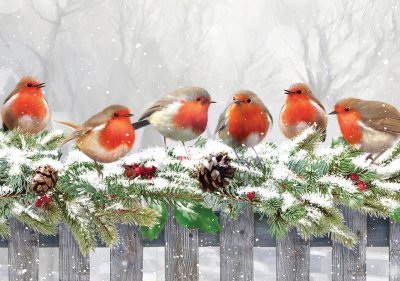 Robin On a Fence Personalised Christmas Card
