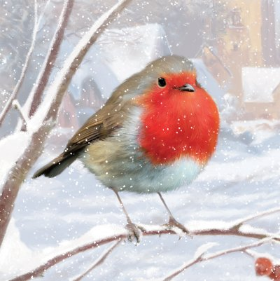 Wintertime Robin Personalised Christmas Card