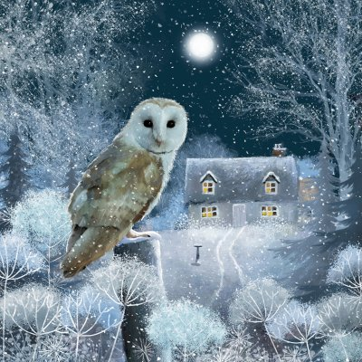Midnight Owl Personalised Christmas Card