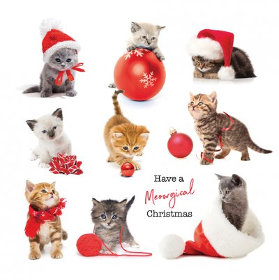 Kittens Personalised Christmas Card
