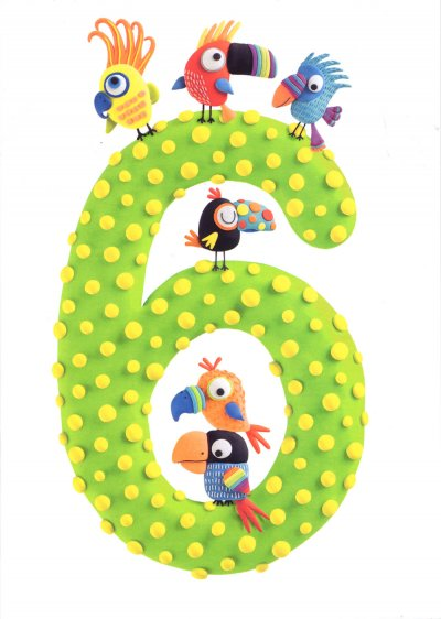 Parrots 6th Birthday Card